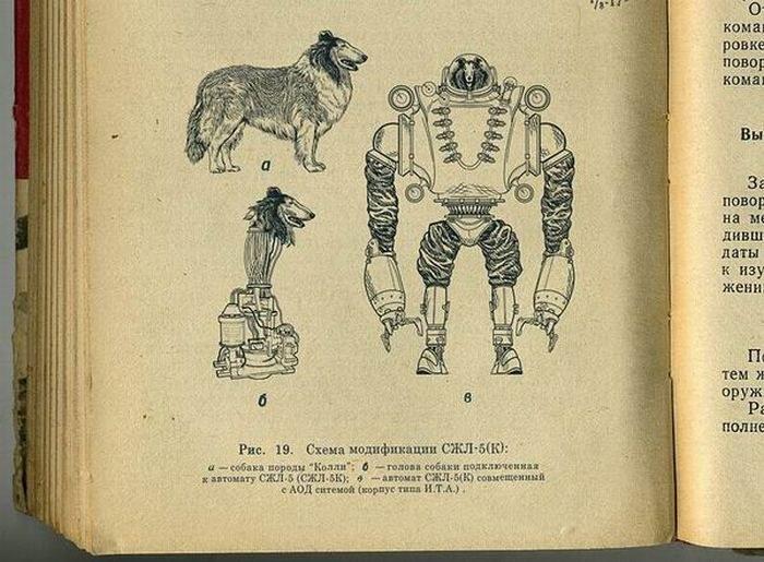 схема трансформации собаки в биоробота СЖЛ-5(К)